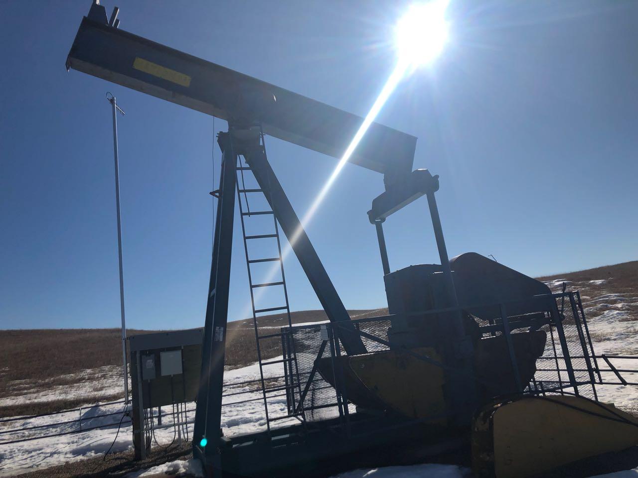 160-73-86 national pump jack